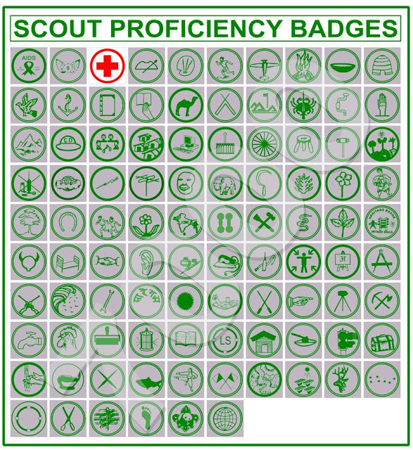 girl guide book of badges